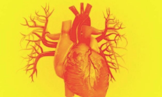 REPORT: Israeli Team Announces First 3D-Printed Heart Using Human Cells